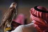 """هذه أغرب أسماء الصقور المشاركة بمهرجان الملك عبدالعزيز منها """"غوميز"""" و""""هتلر"""""""