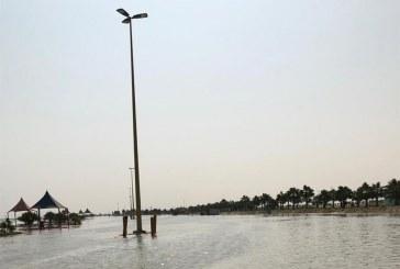"""""""أمانة الأحساء"""" تفصل الكهرباء عن أعمدة الكهرباء بشاطئ العقير (صور)"""