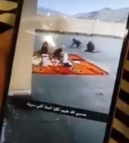 قرود تهاجم مدرسة بنات بمكة وتسرق إفطار المعلمات (فيديو)