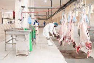أمانة الجوف وبلدياتها : ذبح 3820 أضحية في أول أيام عيد الأضحى