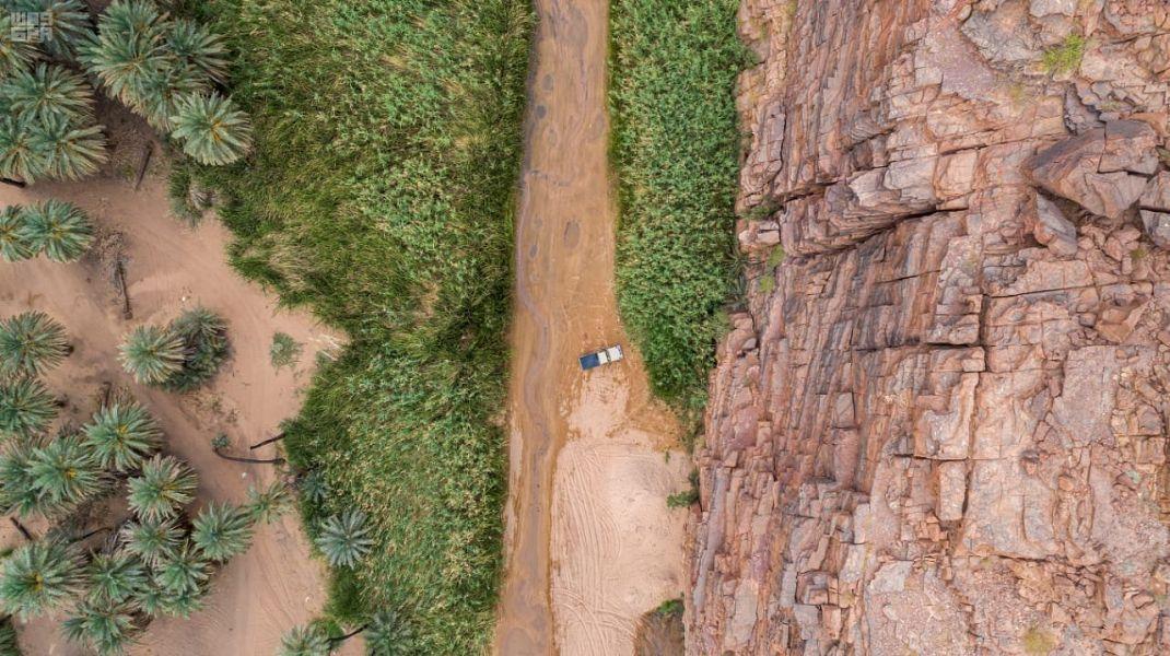 من الوجهات السياحية بالمملكة … وادي الحبق وثمار النبق