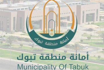 أمانة تبوك تعتمد 3 مخططات سكنية لأصحاب المنح السامية وتحدد موعد سحب القرعة