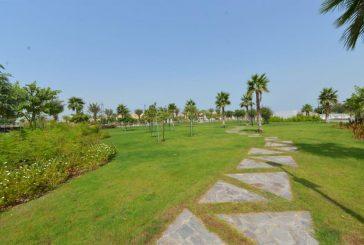 أمانة جدة تنهي تنفيذ مشروع حديقة الأمير ماجد تُعد الأكبر في المدينة