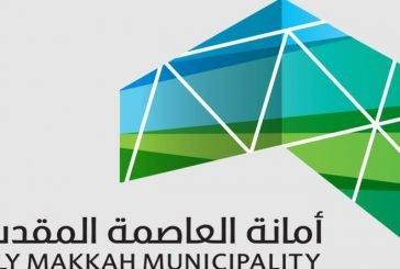 أمانة مكة تغلق 4 منشآت تجارية وتمنع تأجير الألعاب بطرق عشوائية في الحدائق العامة