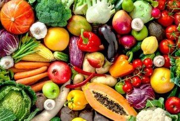 البيئة: يومان على انتهاء مهلة استيراد الخضروات والفواكه الطازجة دون إذن استيراد إلكتروني