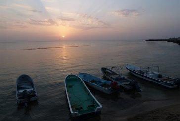 تسجيل جزر فرسان في اليونسكو ووزير البيئة يعلق
